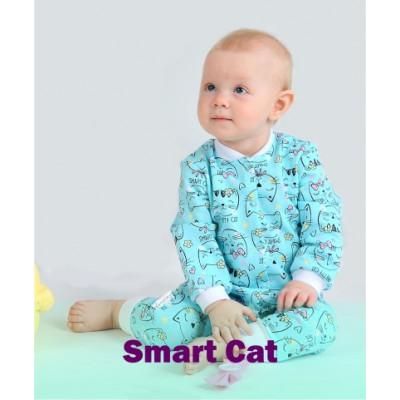 Smart Cat (4)