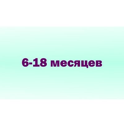 6 - 18 мес. (98)